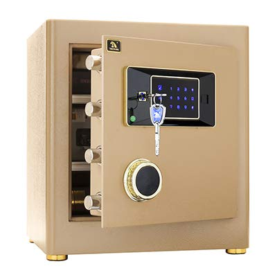 Digital Security Safe Box for Home Office Double...