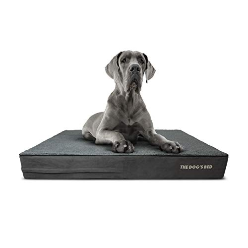 The Dog's Bed Orthopedic Dog Bed XXL Grey Plush...