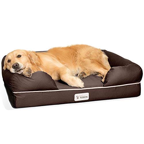 PetFusion Large Dog Bed w/Solid 4' Memory Foam, Waterproof...
