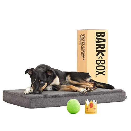 BarkBox Memory Foam Platform Dog Bed | Plush...