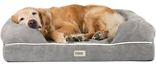 Friends Forever Memory Foam Orthopedic Dog Bed for Large...