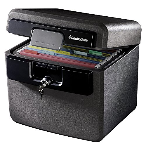 SentrySafe HD4100 Fireproof Safe and Waterproof Safe with...